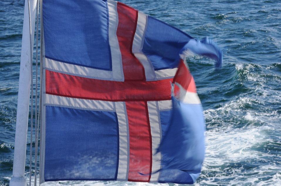 Iceland flag : Free Stock Photo