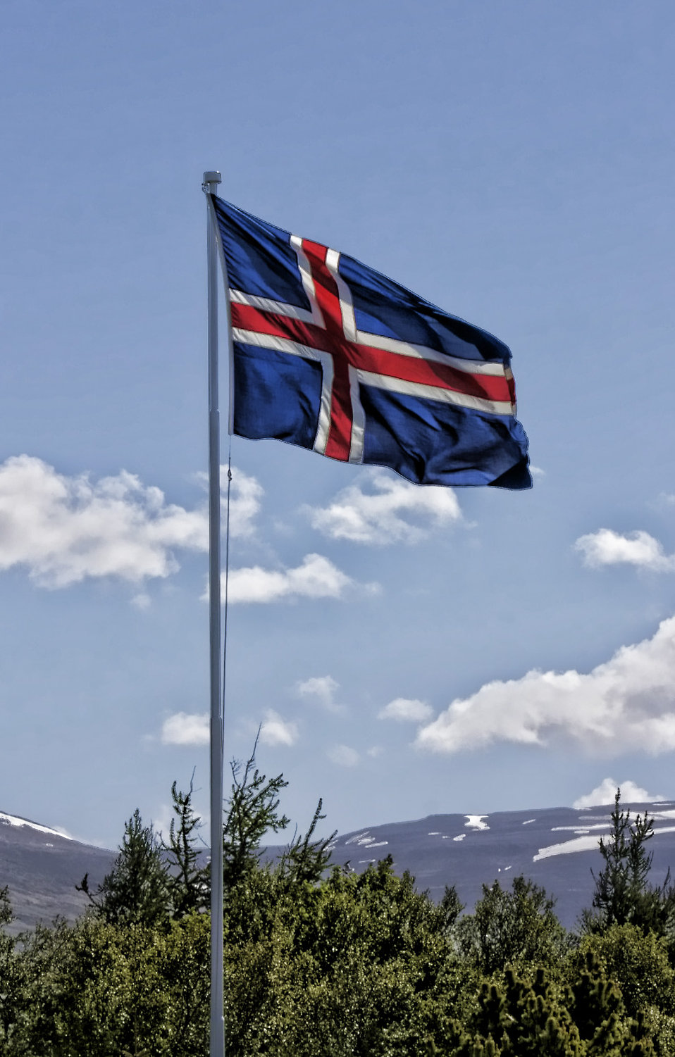 Flag of Iceland : Free Stock Photo