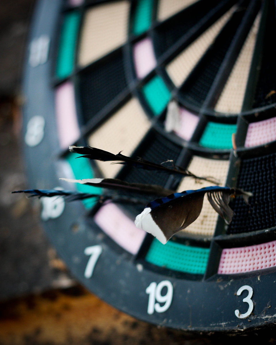 Dartboard close-up : Free Stock Photo