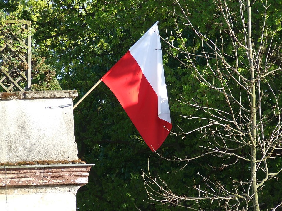 Polish flag : Free Stock Photo