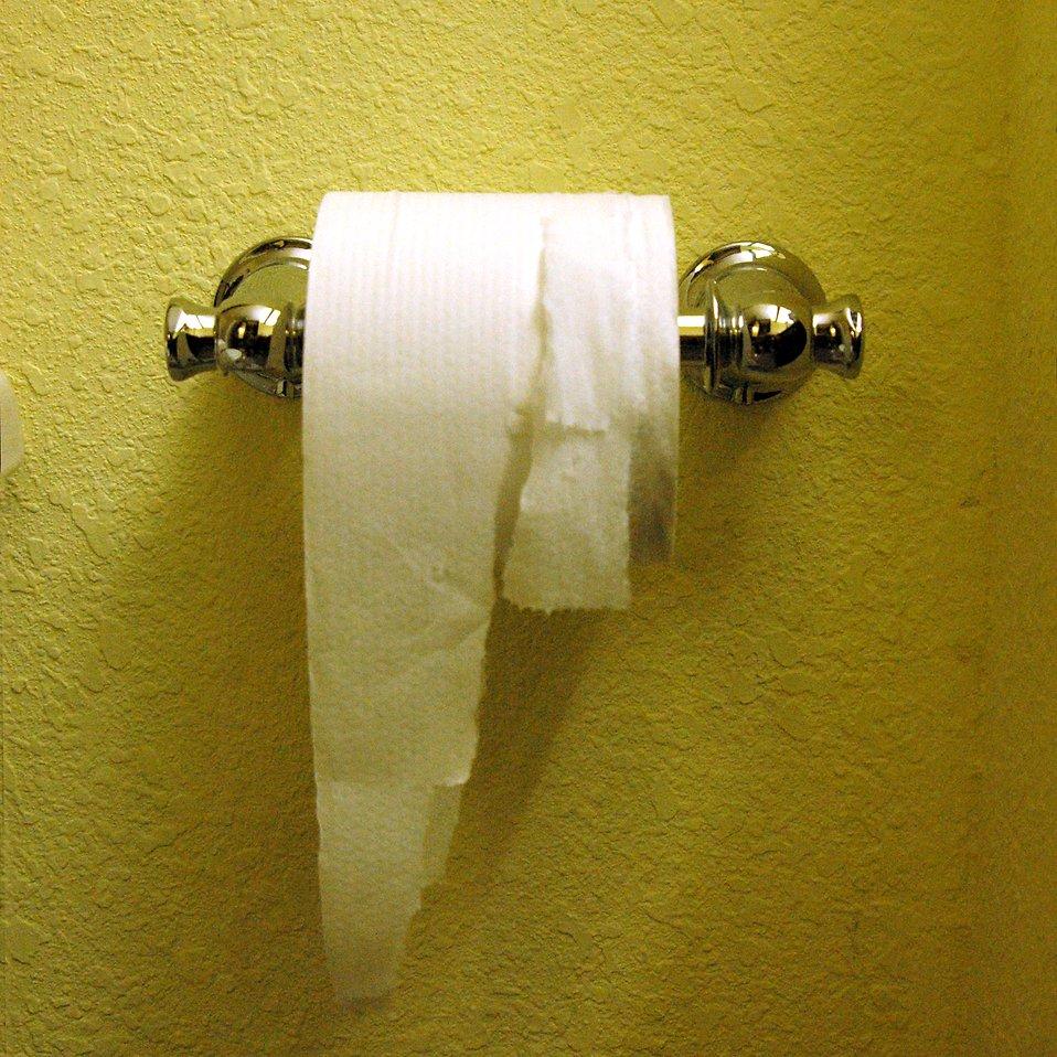 Toilet paper : Free Stock Photo