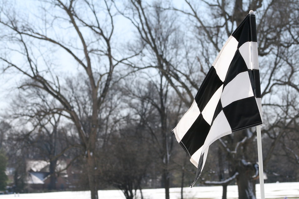 Checkered flag : Free Stock Photo