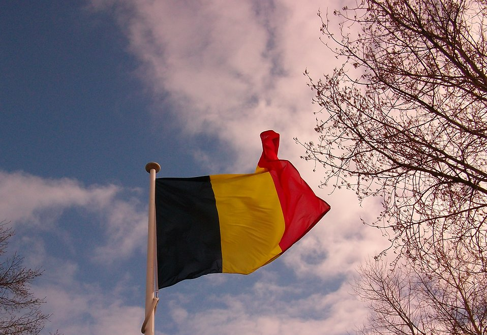 Belgian flag : Free Stock Photo