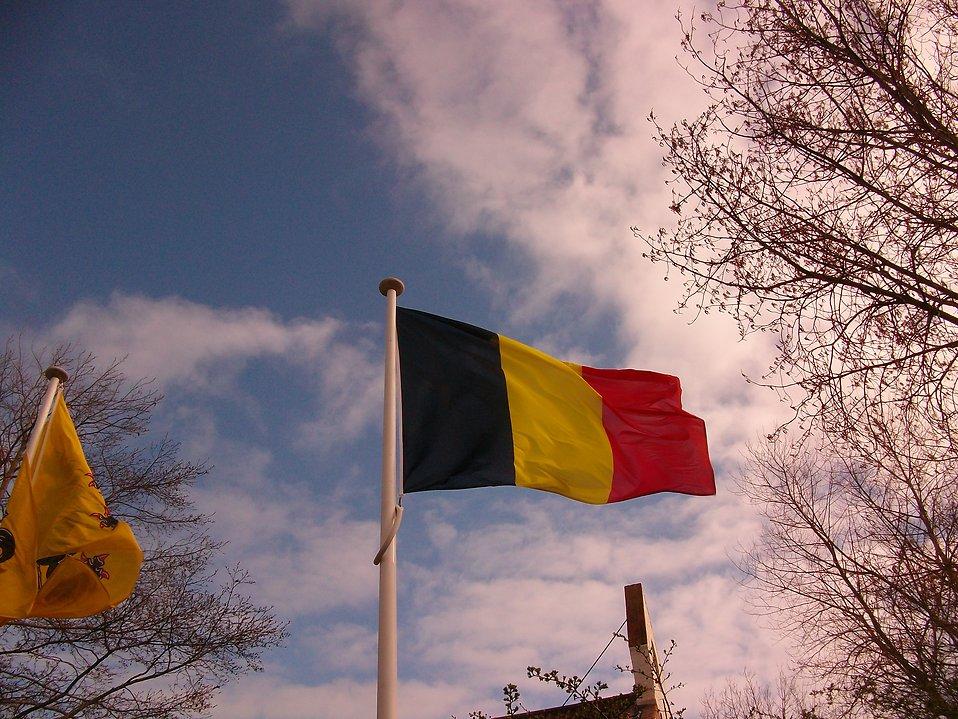 Belgian flag : Free Stock Photo