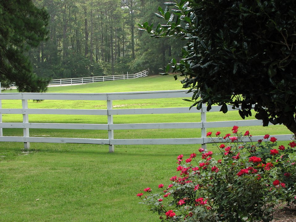 Grass yard surrounded by white wooden fence : Free Stock Photo