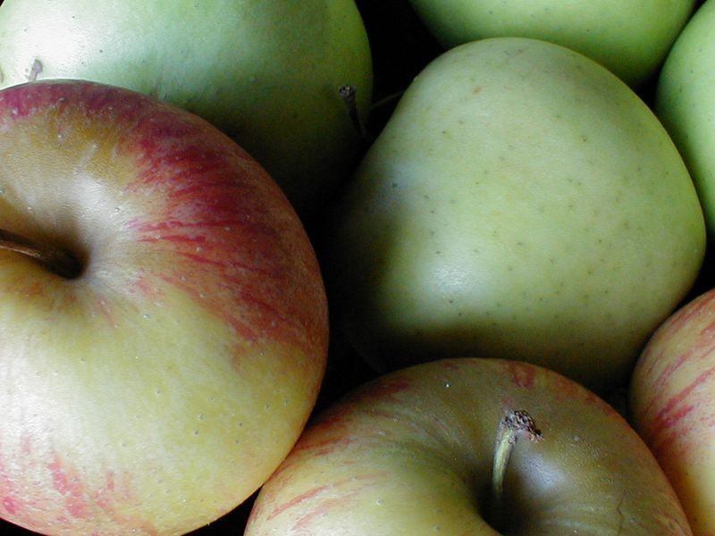 Closeup of green apples : Free Stock Photo