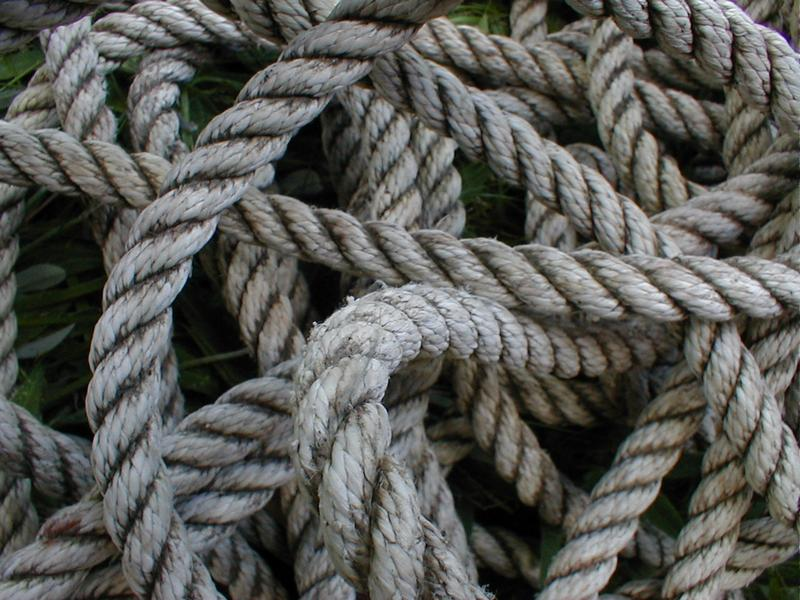 Closeup of a jumble of rope : Free Stock Photo