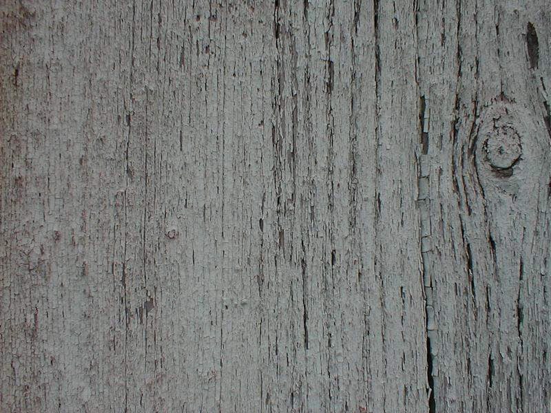 Closeup of a piece of wood : Free Stock Photo