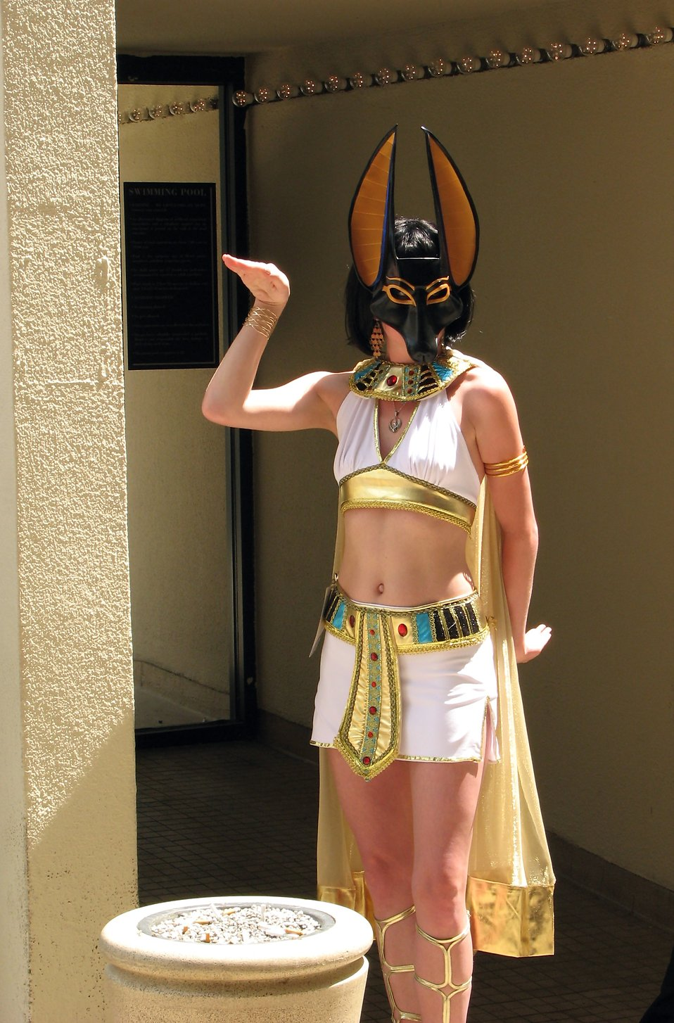 A beautiful girl in an Egyptian costume at Dragoncon 2008 : Free Stock Photo