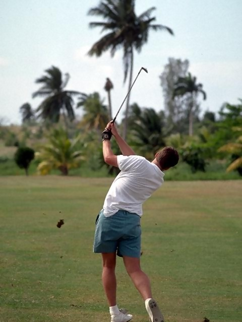 Rear view of a man swinging a golf club on a tropical golf course : Free Stock Photo