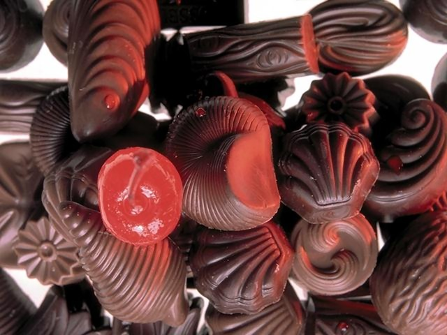 A mixture of sea shell shaped chocolate candies : Free Stock Photo