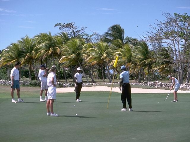 A group of golfers watching a putt on a tropical golf course.