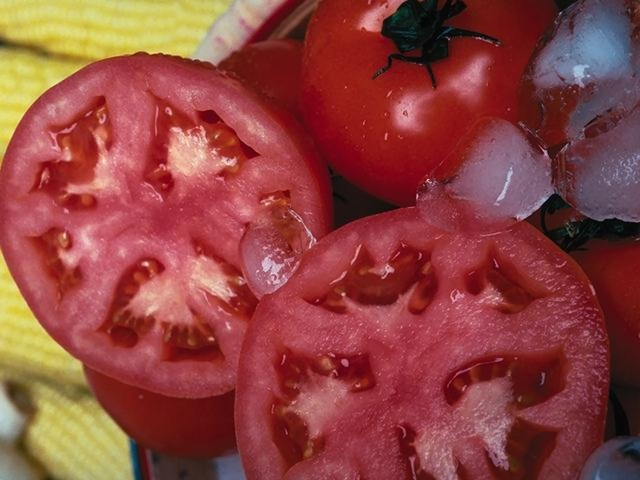 Close-up of sliced tomatoes : Free Stock Photo