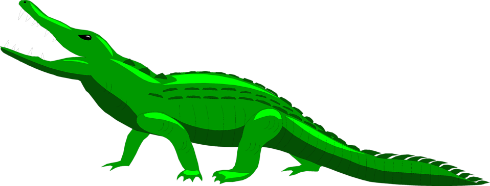 Illustration of an alligator : Free Stock Photo