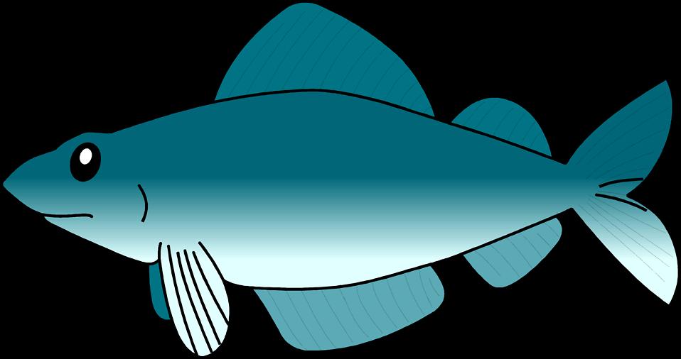 Fish Cartoon Transparent Background on Transparent Tropical Fish