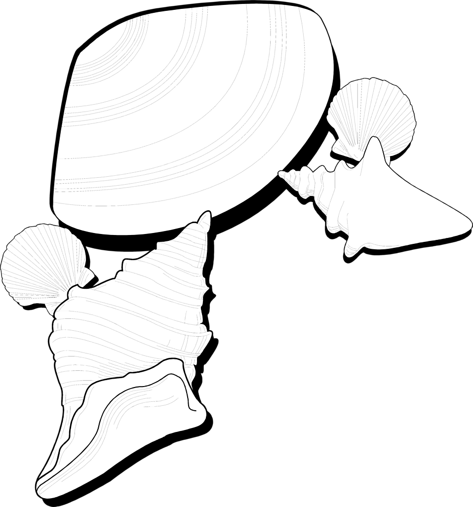 Illustration of sea shells : Free Stock Photo
