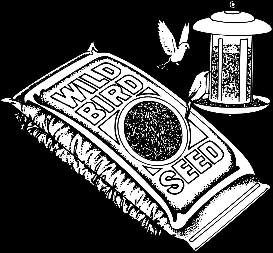birdseed free stock photo illustration of bird seed and birds