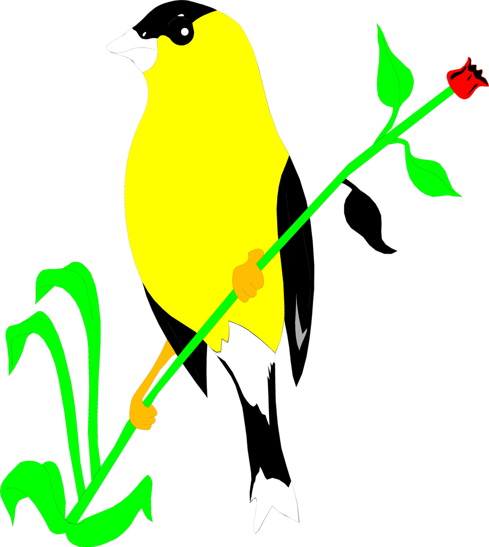 Illustration of a golden finch : Free Stock Photo