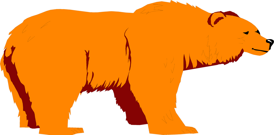 Illustration of a brown bear : Free Stock Photo