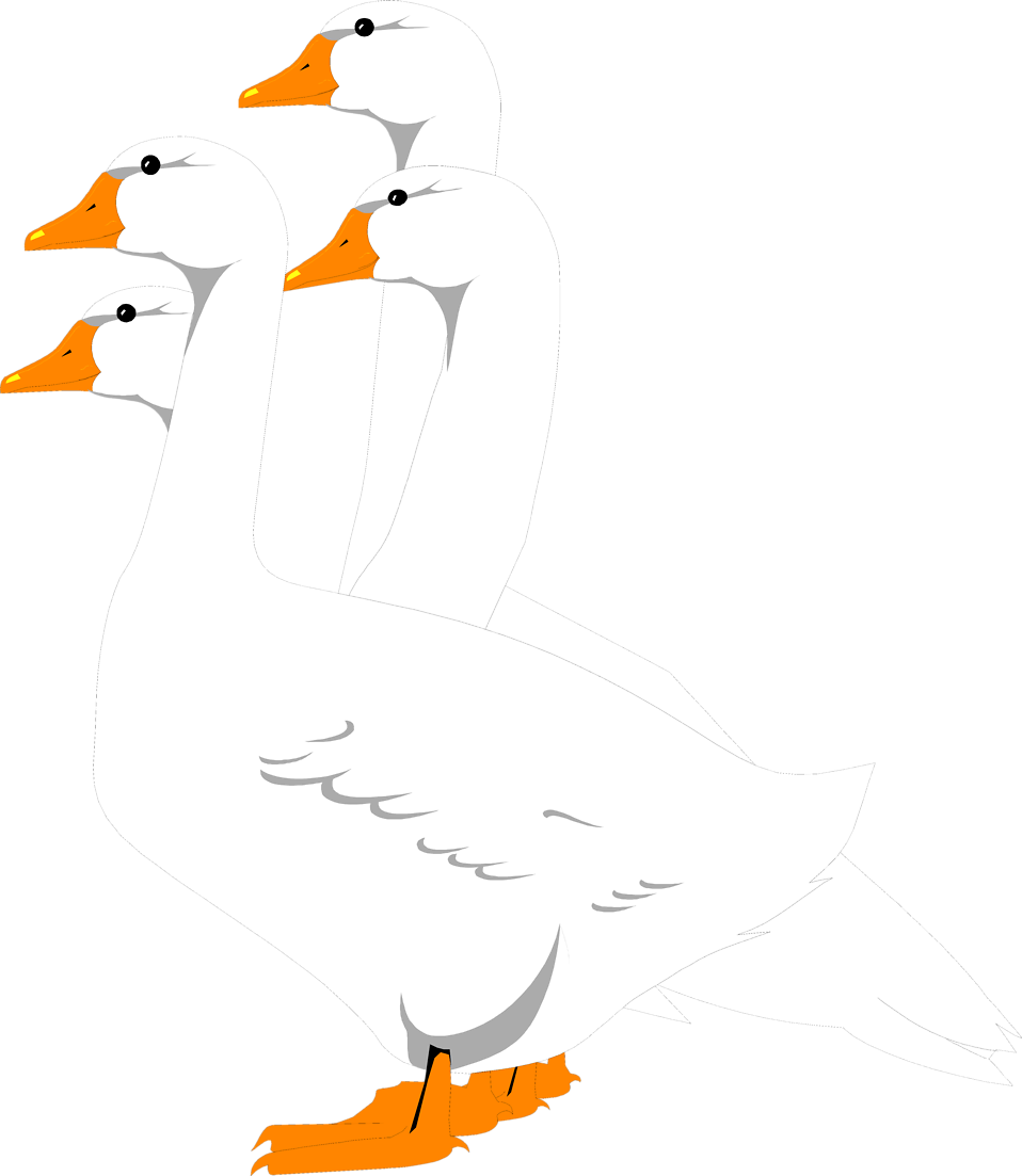 Illustration of a group of geese : Free Stock Photo