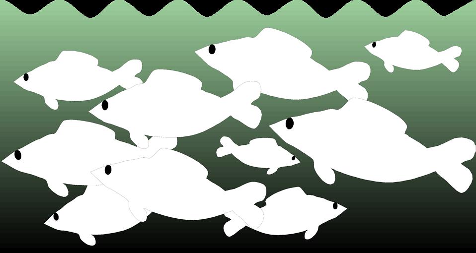 Illustration of a school of fish : Free Stock Photo