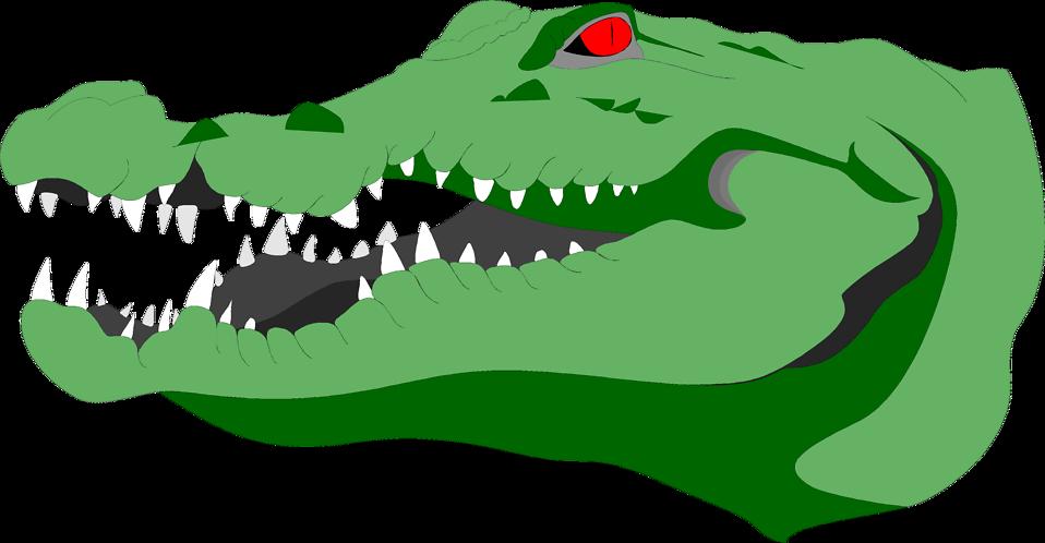 Illustration of a crocodile head  : Free Stock Photo
