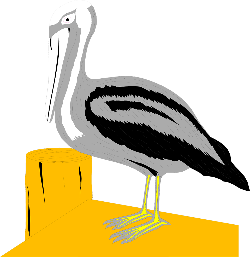 Illustration of a pelican on a dock : Free Stock Photo