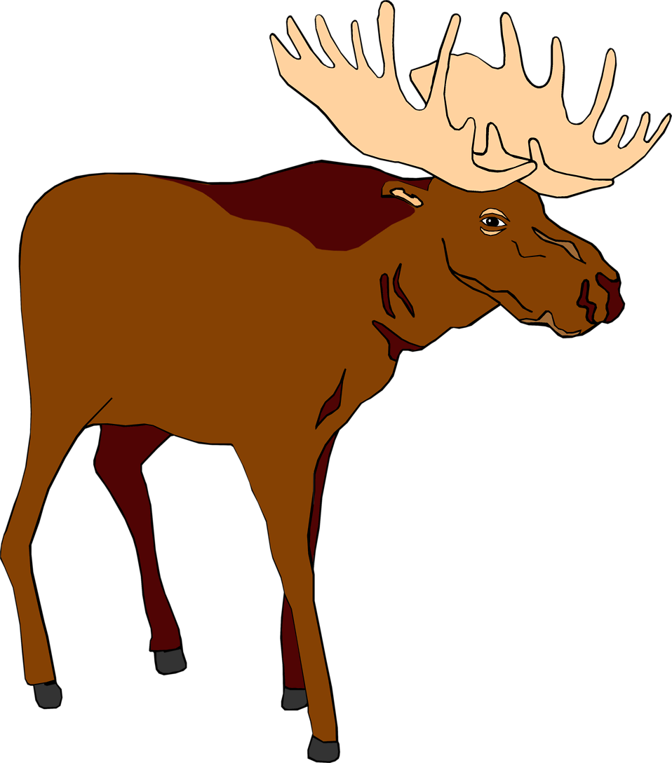 Illustration of a brown moose : Free Stock Photo