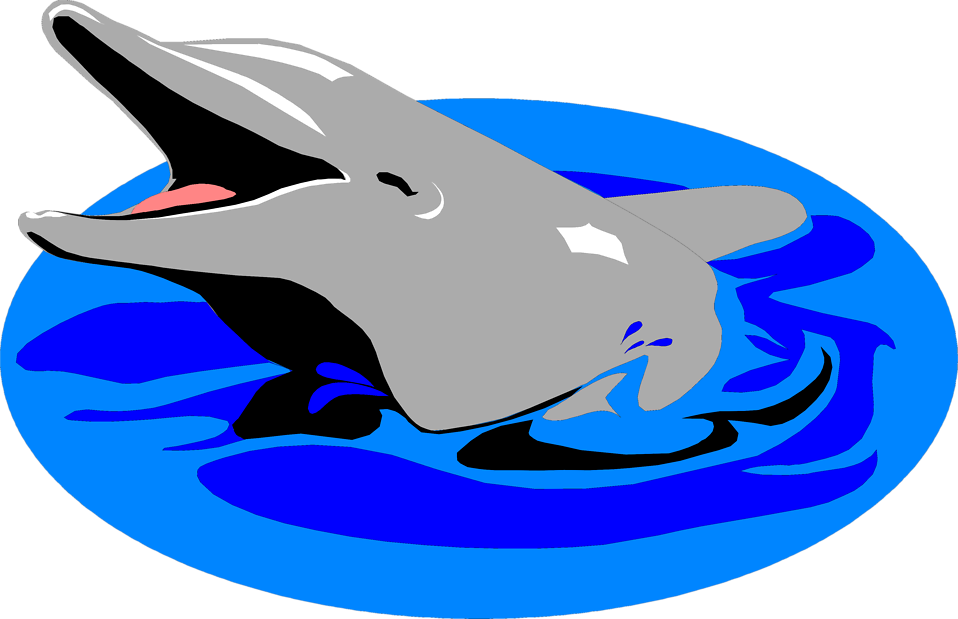 Illustration of a dolphin in the water : Free Stock Photo