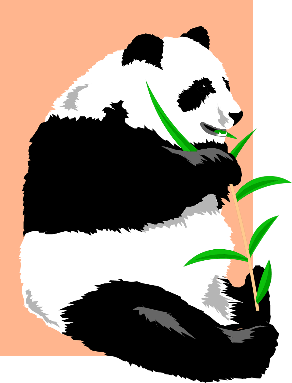 Illustration of a giant panda : Free Stock Photo