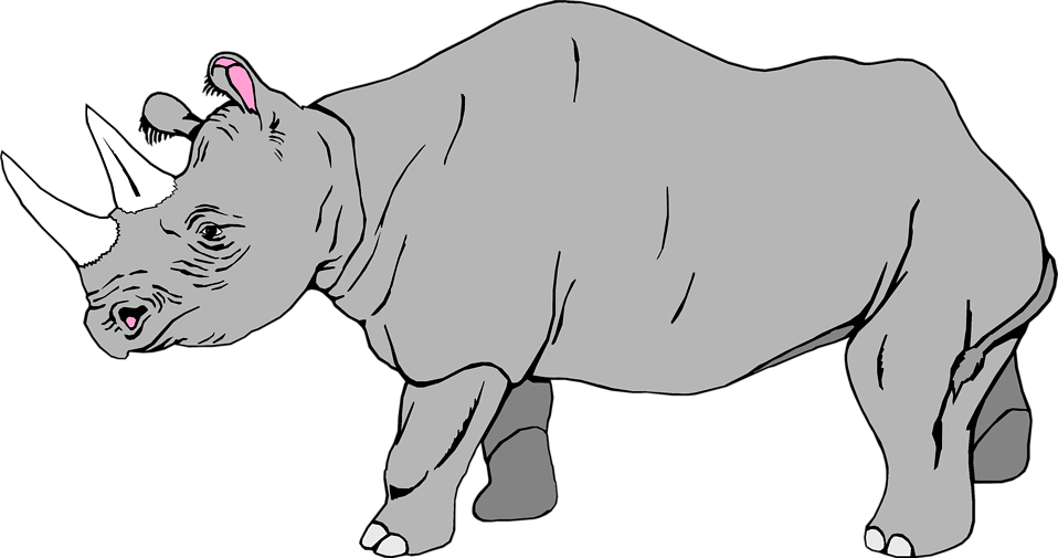 Illustration of a rhinoceros : Free Stock Photo