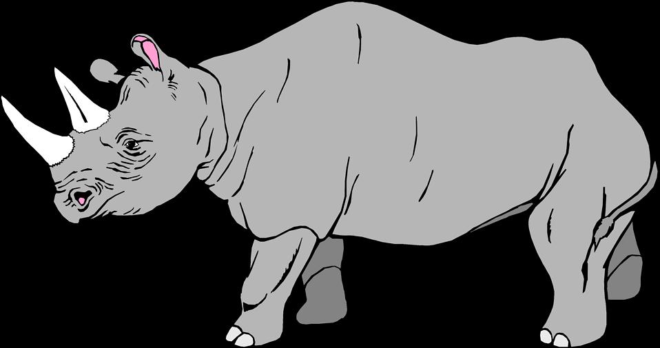 Illustration of a rhinoceros : Free Stock Photo