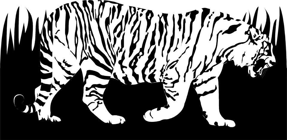 Illustration of a tiger : Free Stock Photo