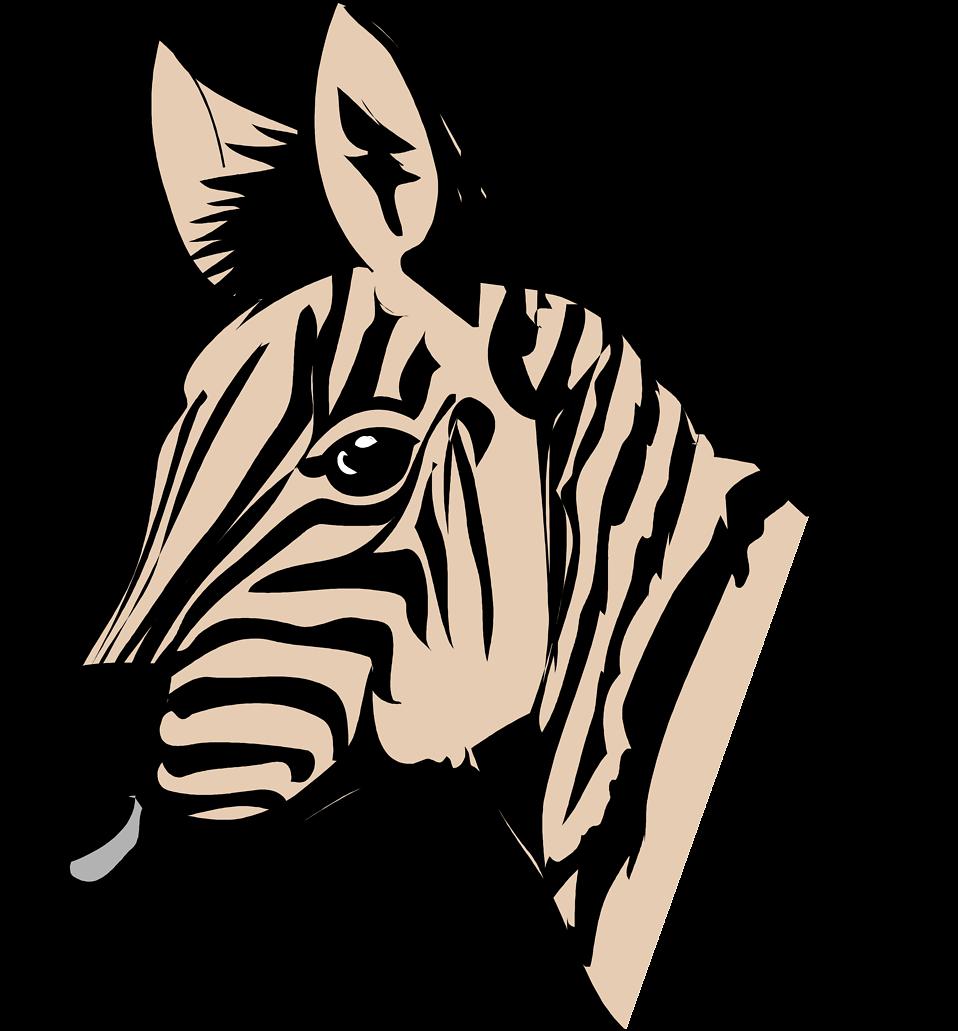 Zebras | Free Stock Photo | Illustration of a zebra head ...