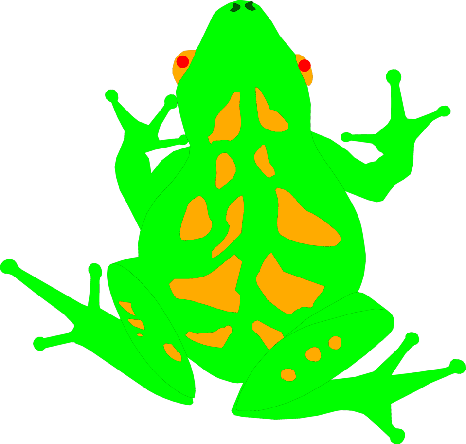 Illustration of a bright green frog.