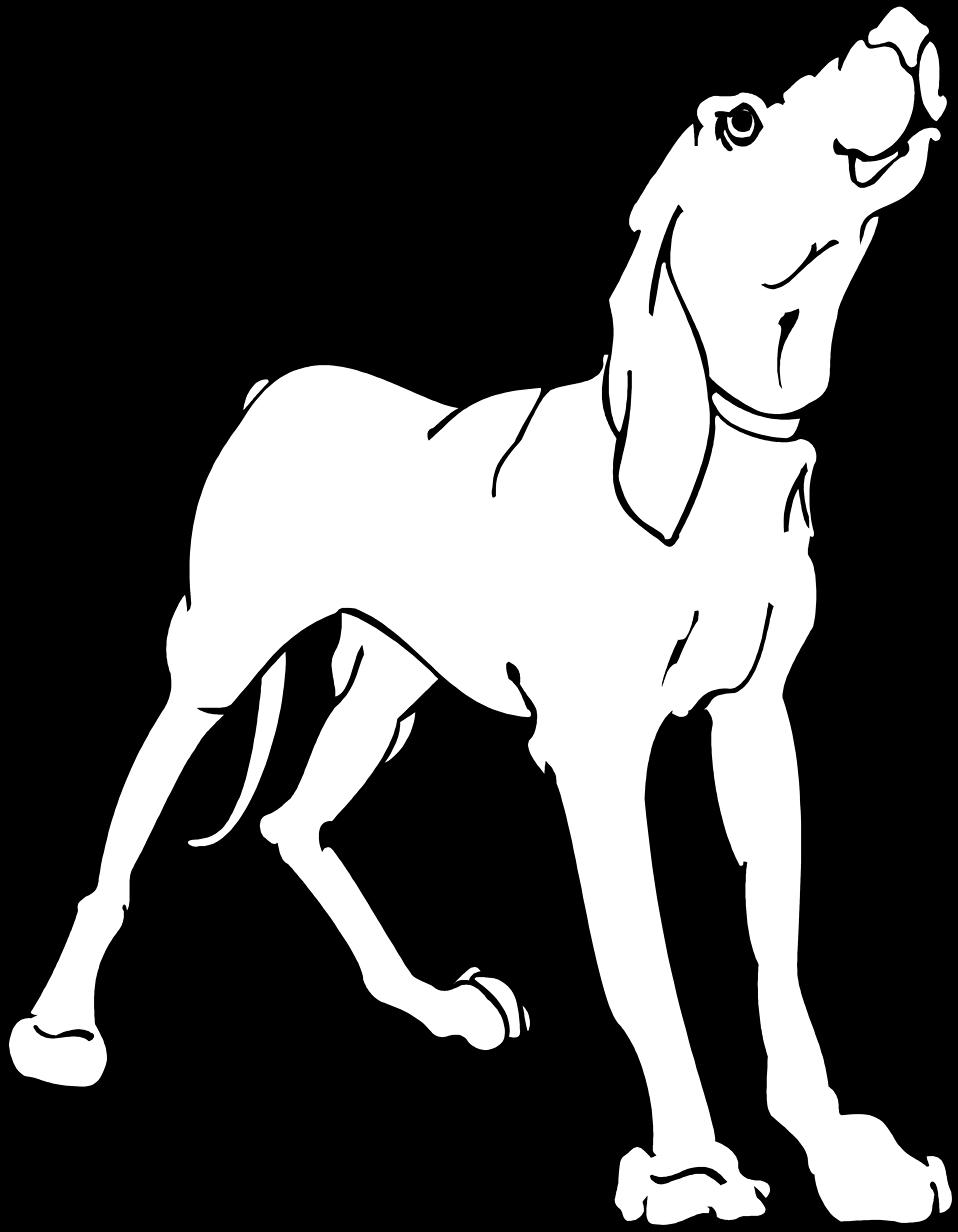 Illustration of a hound dog : Free Stock Photo