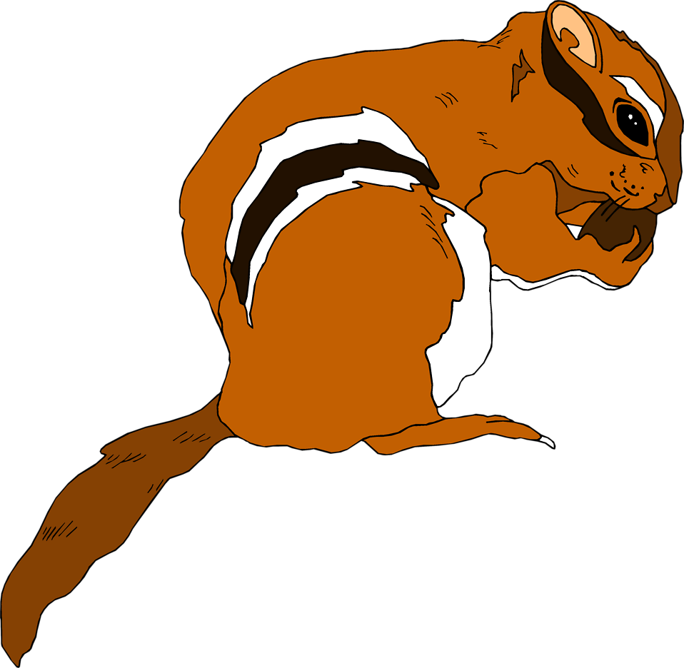 Illustration of a chipmunk : Free Stock Photo
