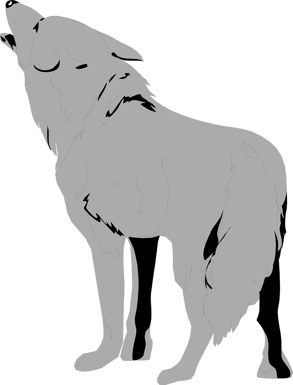 Illustration of a coyote : Free Stock Photo