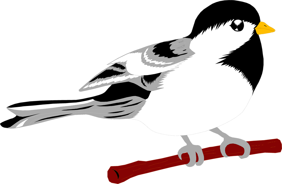 Illustration of a small bird perched on a branch : Free Stock Photo