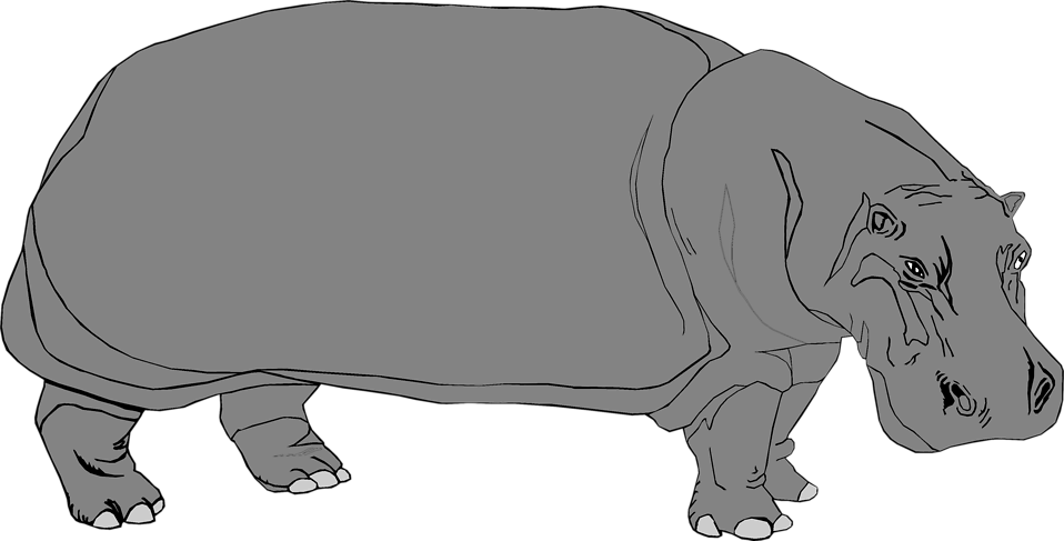 Illustration of a hippo : Free Stock Photo