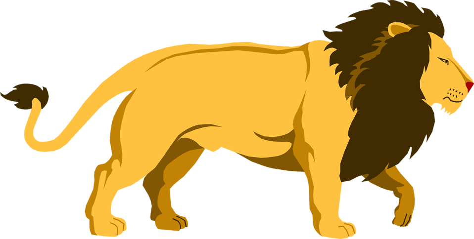 Illustration of a lion : Free Stock Photo