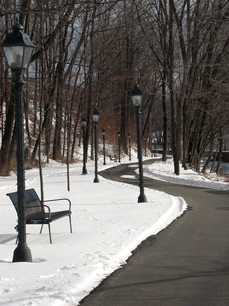 Winter Free Stock Photo A Snowy Path In A Park 3947