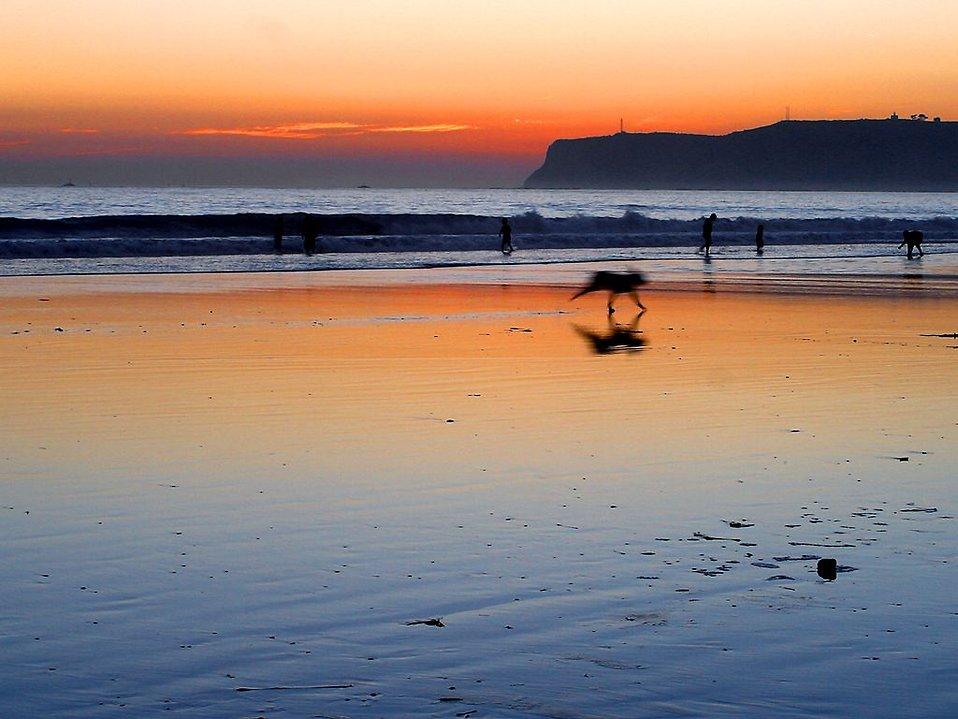A beach sunset : Free Stock Photo