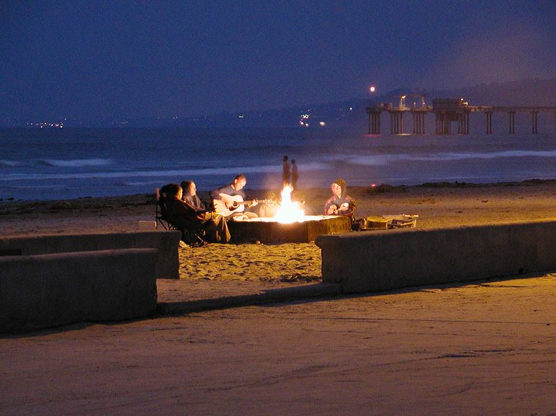 A group sitting around a campfire on a beach at night : Free Stock Photo