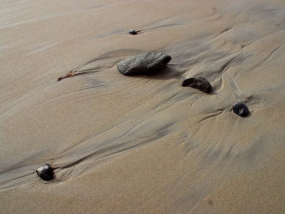 Rocks on wet sand at the beach : Free Stock Photo