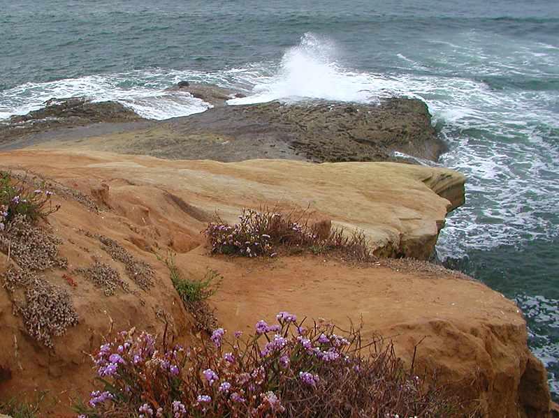 Ocean waves crashing on a rock : Free Stock Photo