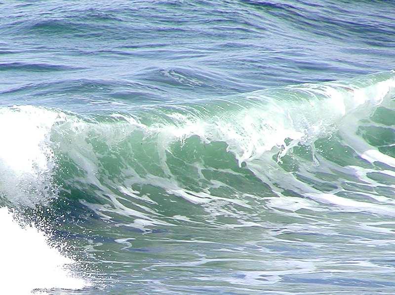 Closeup of an ocean wave : Free Stock Photo