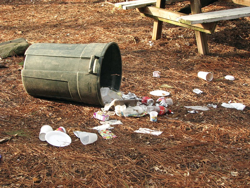 Trash spilling out of a tipped over trash can : Free Stock Photo