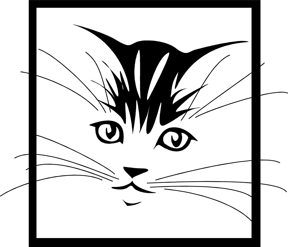 Illustration of a kitten face : Free Stock Photo