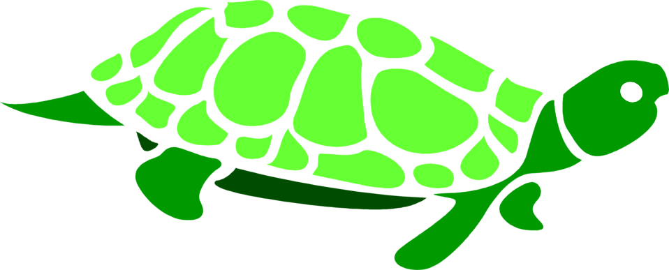 Illustration of a green turtle : Free Stock Photo